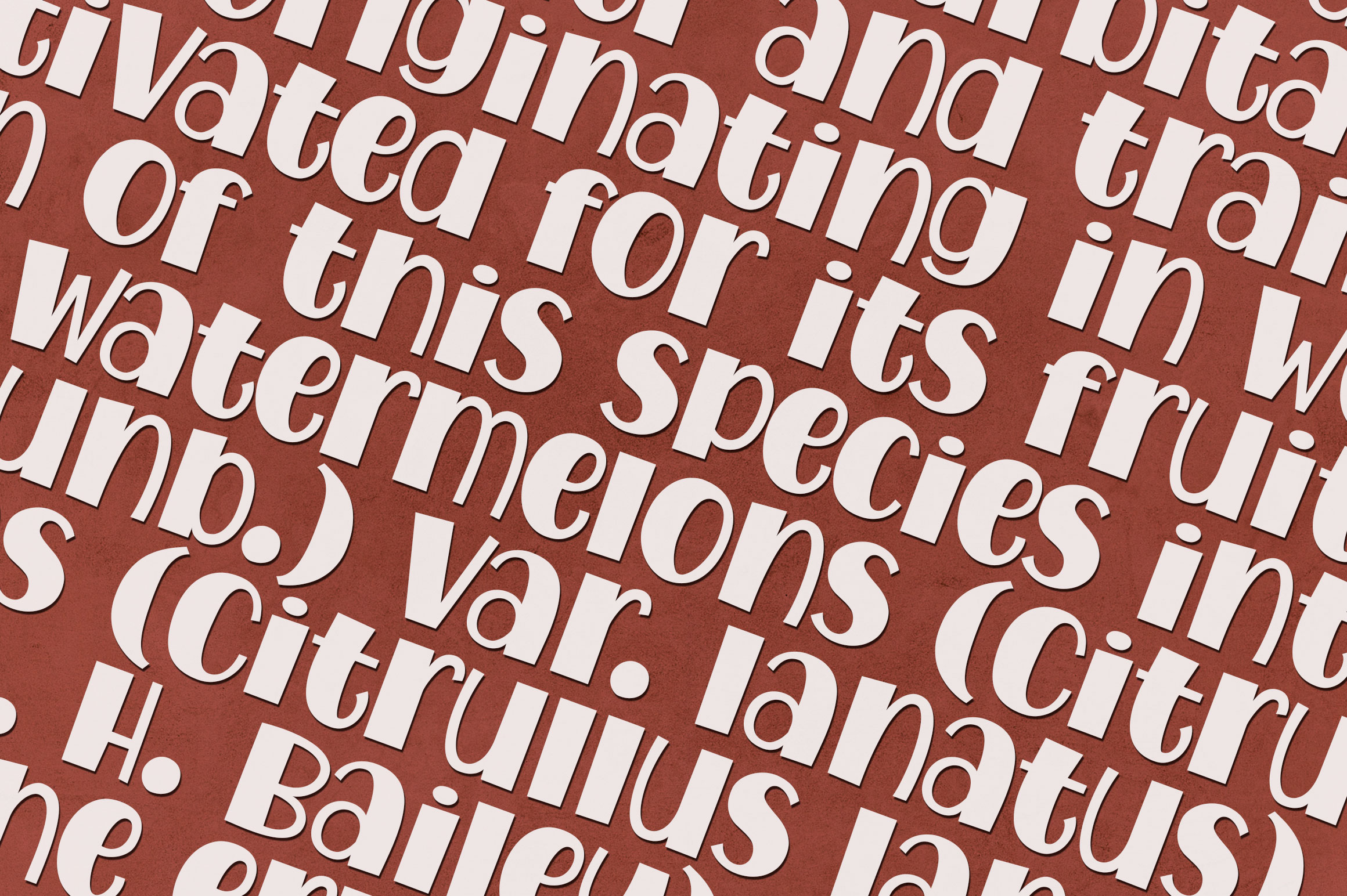 Watermelon Font Family example image 3