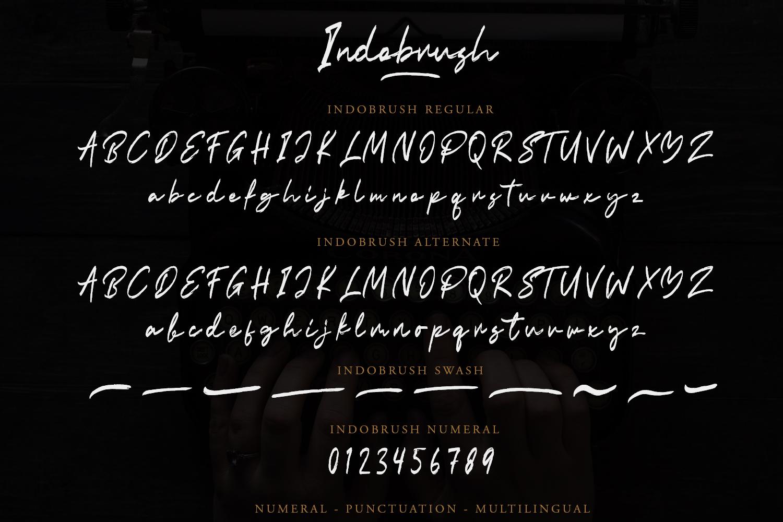 Indobrush Signature Brush example image 8