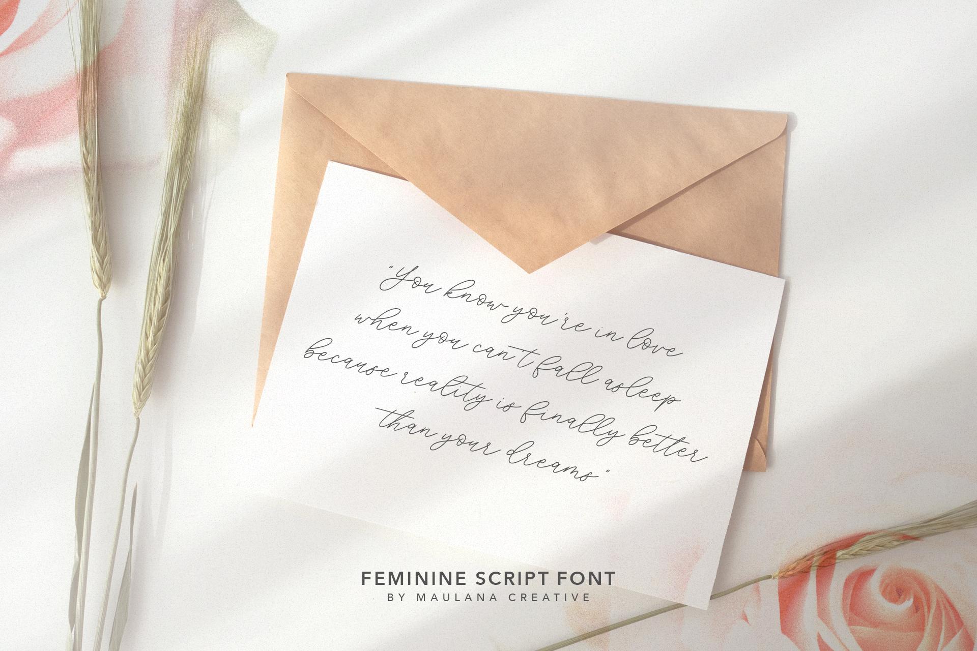 Southwide Feminine Script Font example image 8