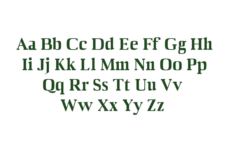 Barnes Serif Typeface example image 2