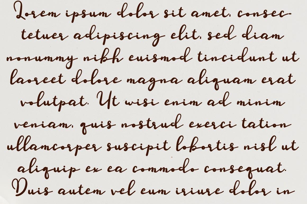 Defilery Script Font example image 2
