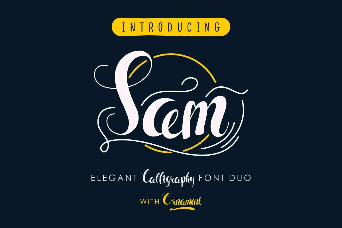 Sam example image 2