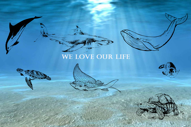 Ocean inhabitants set. Hand drawn illustration collection. example image 5