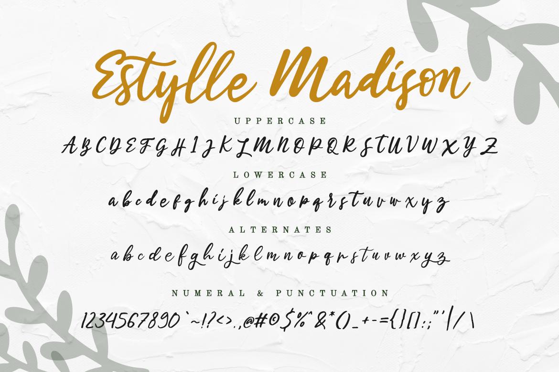 Estylle Madison Calligraphy example image 12