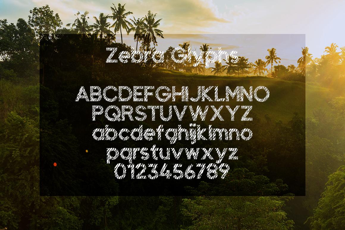 Zebra example image 2