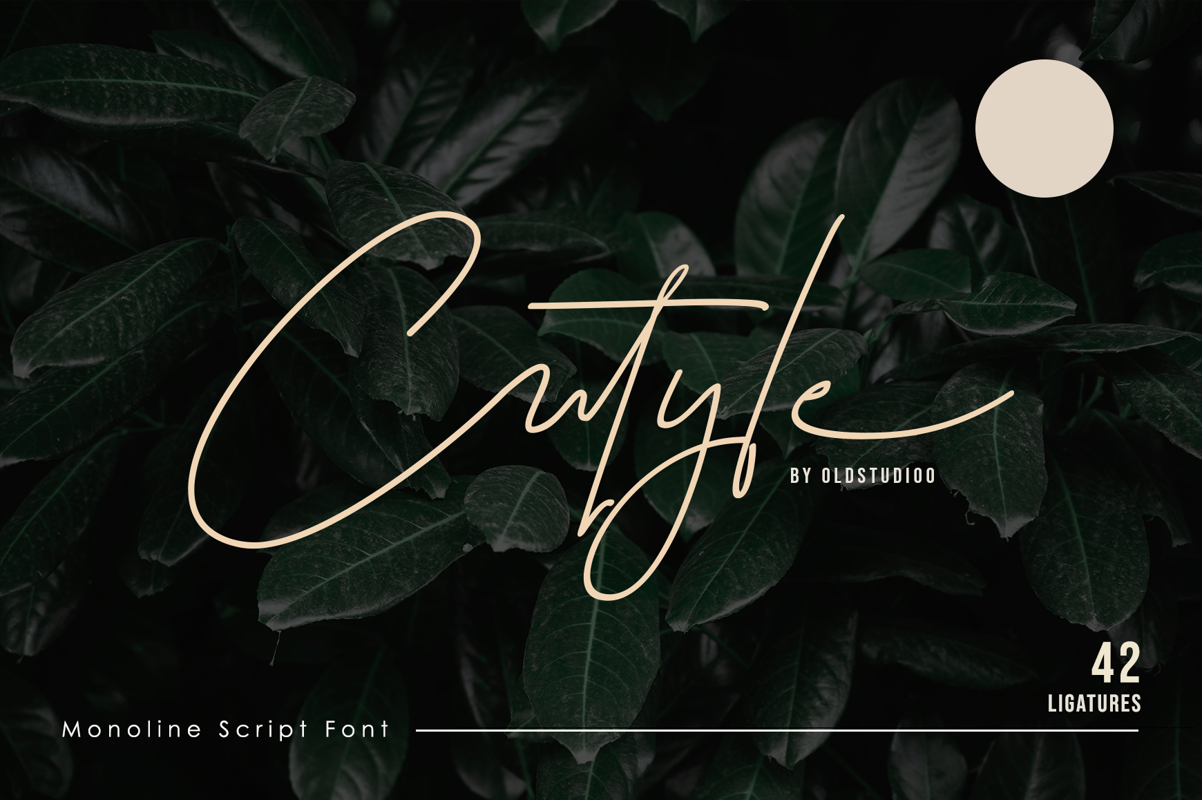 Cutyle Monoline Script example image 1