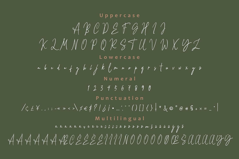 Balietan Signature Font example image 8