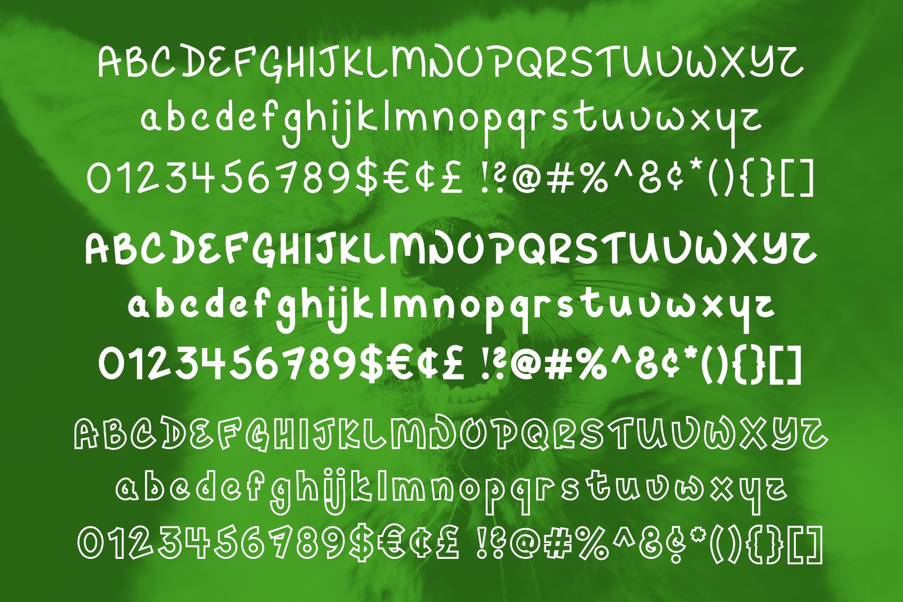 Hey Fox Font Trio example image 2