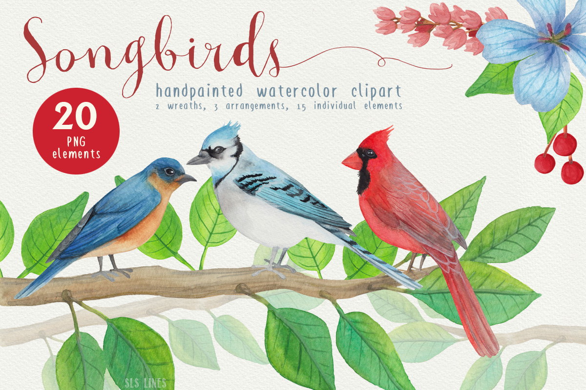 Song Birds Watercolor Clipart example image 1