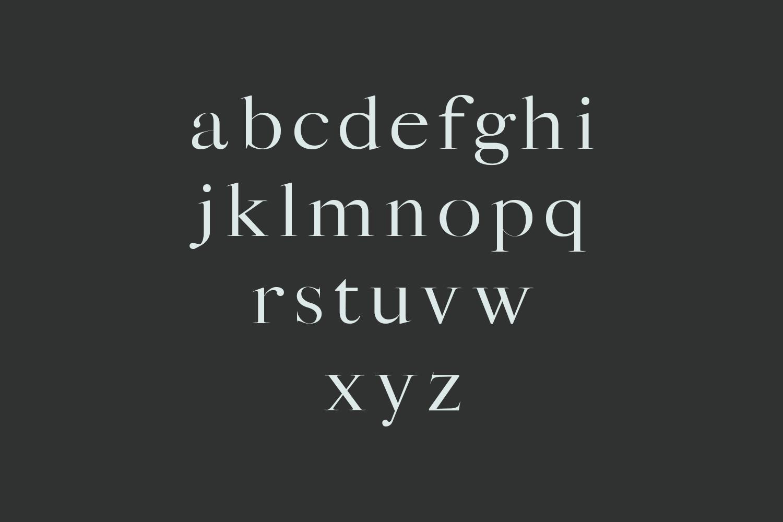 Sharis Serif Typeface example image 3