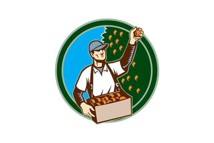 Fruit Picker Worker Picking Plum Circle example image 1