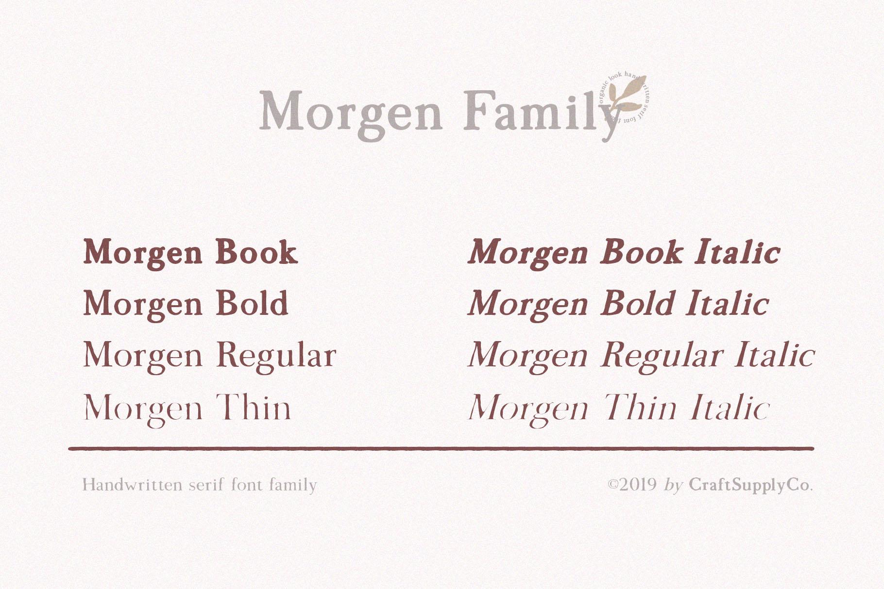 Morgen - Handwritten Serif Font example image 3