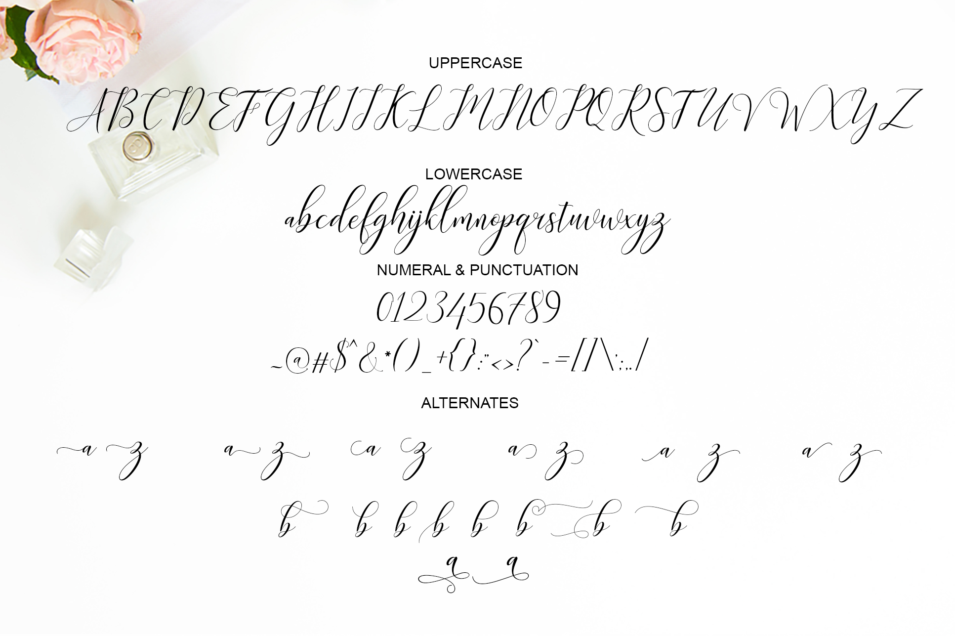 The Amarlettering Bundles Vol. II ONLY $5 example image 7