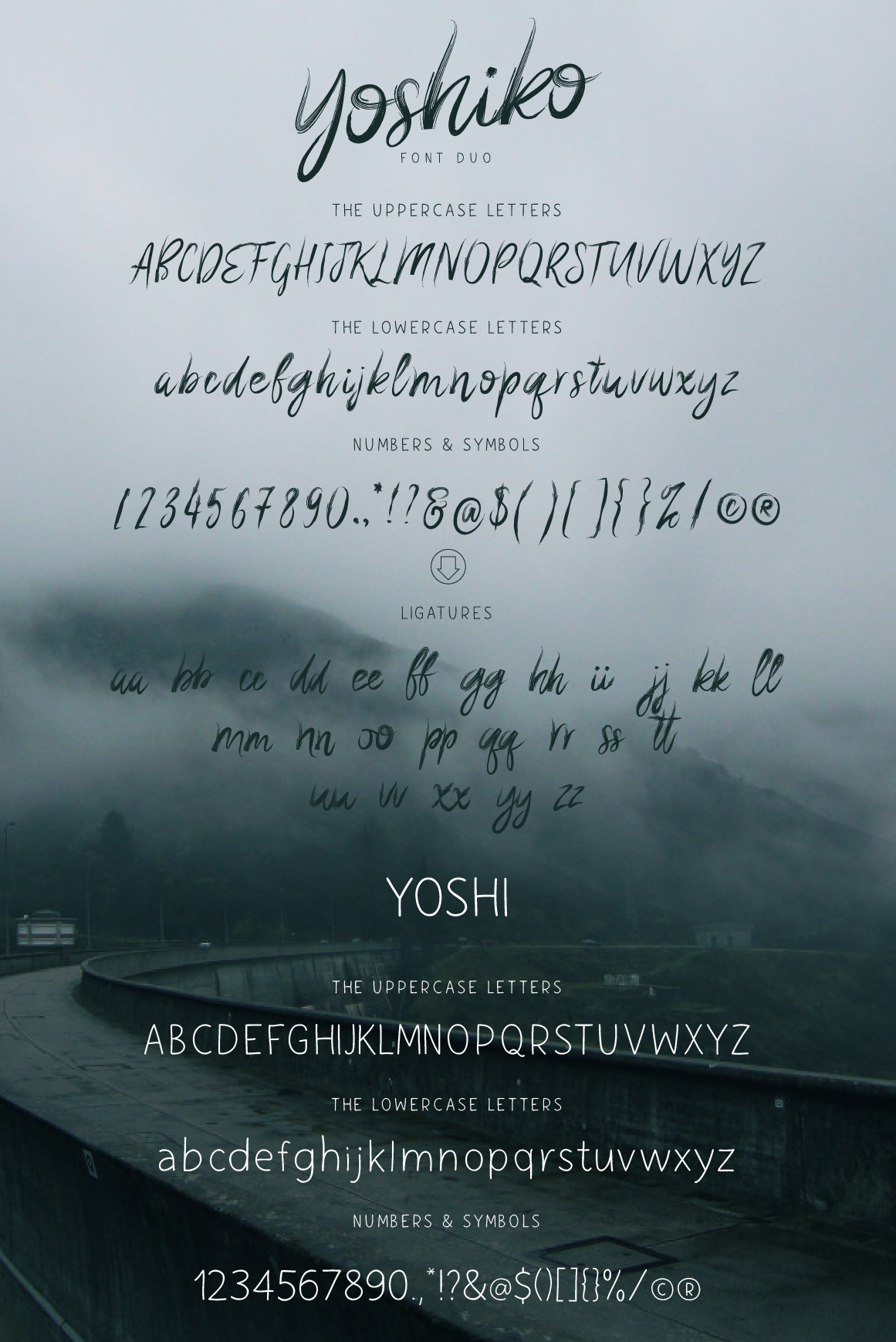 Yoshiko Font Duo example image 5