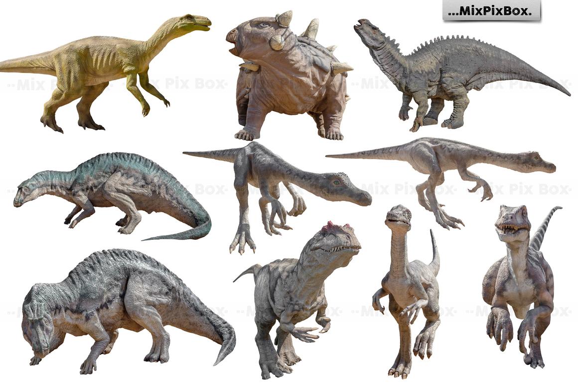 Dinosaur v.2 Photo Overlays example image 4