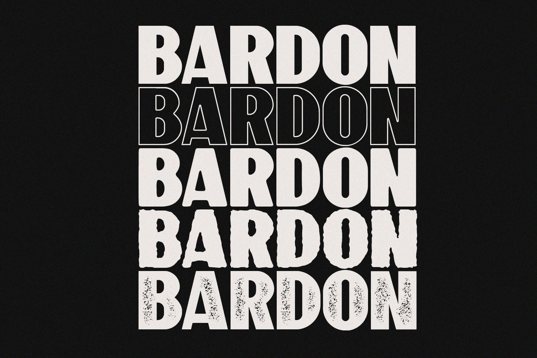 10 Font - Bardon Font Family example image 6