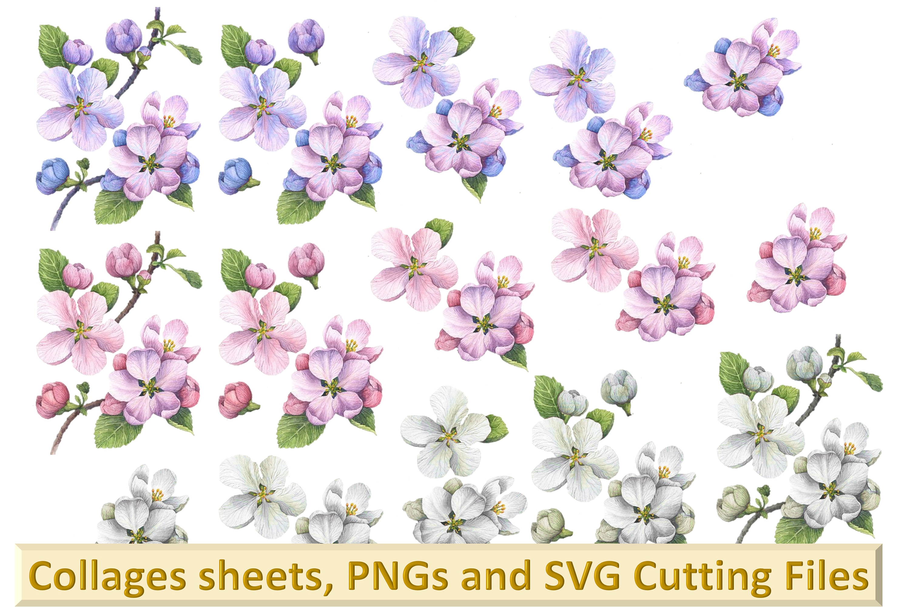 Woodland Blossom clipart bundle with card making kits CU example image 1