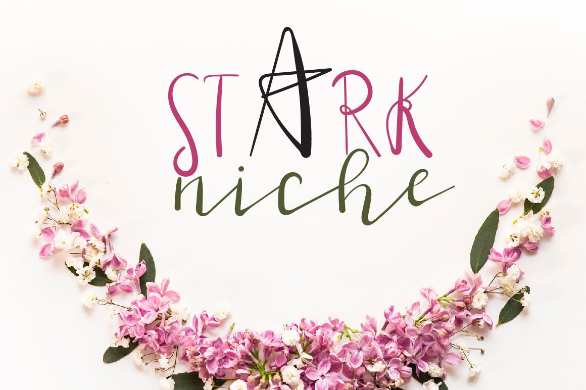 Stark Niche Script Font example image 1