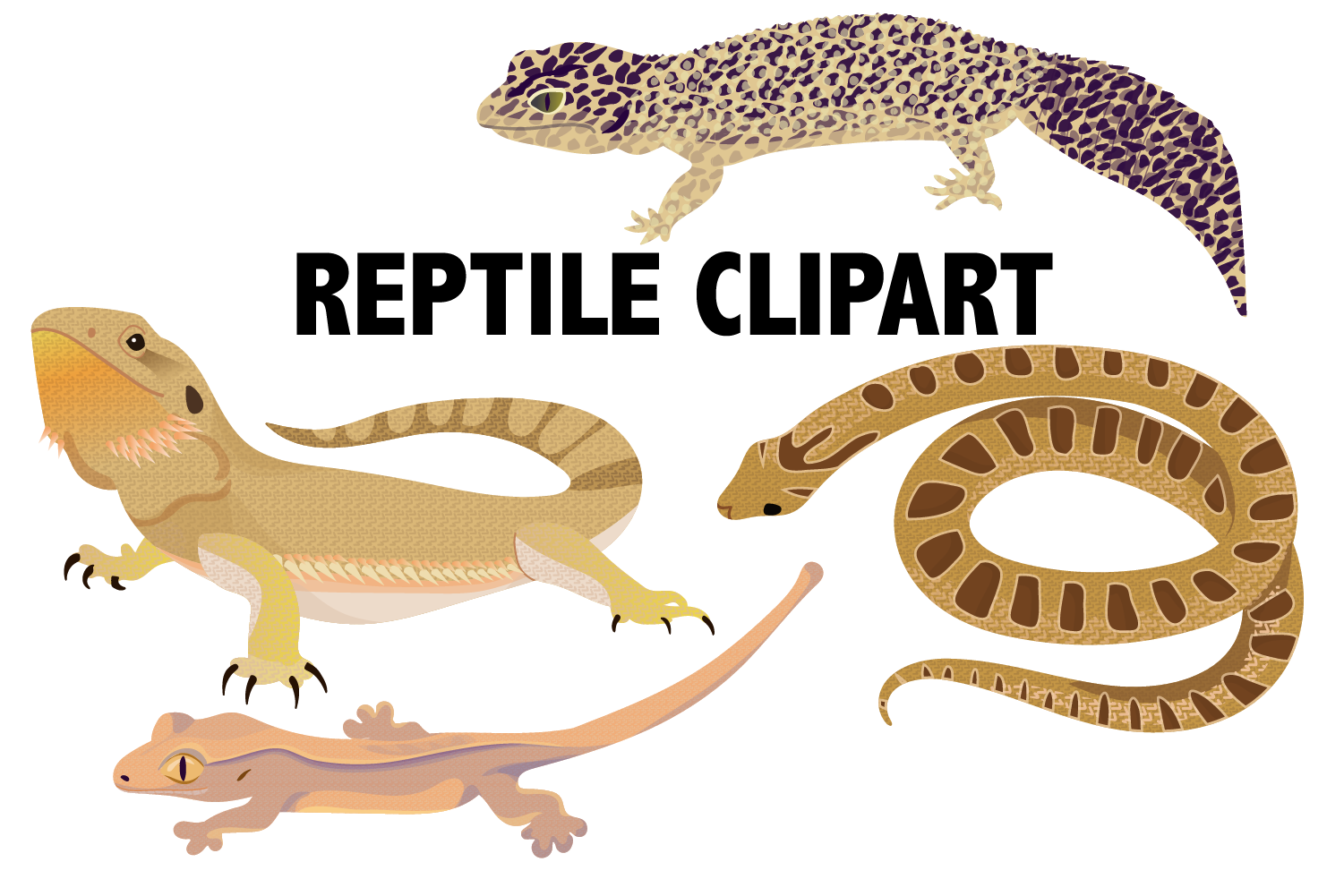 Reptile Clipart example image 1