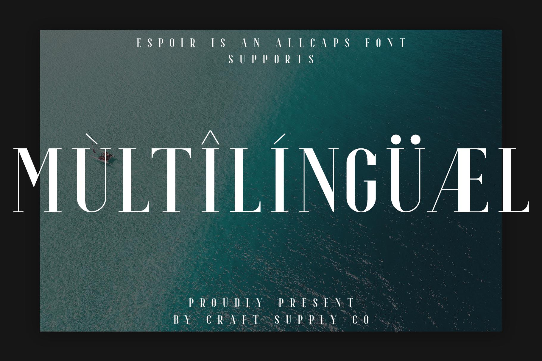Espoir Serif Font Family example image 9