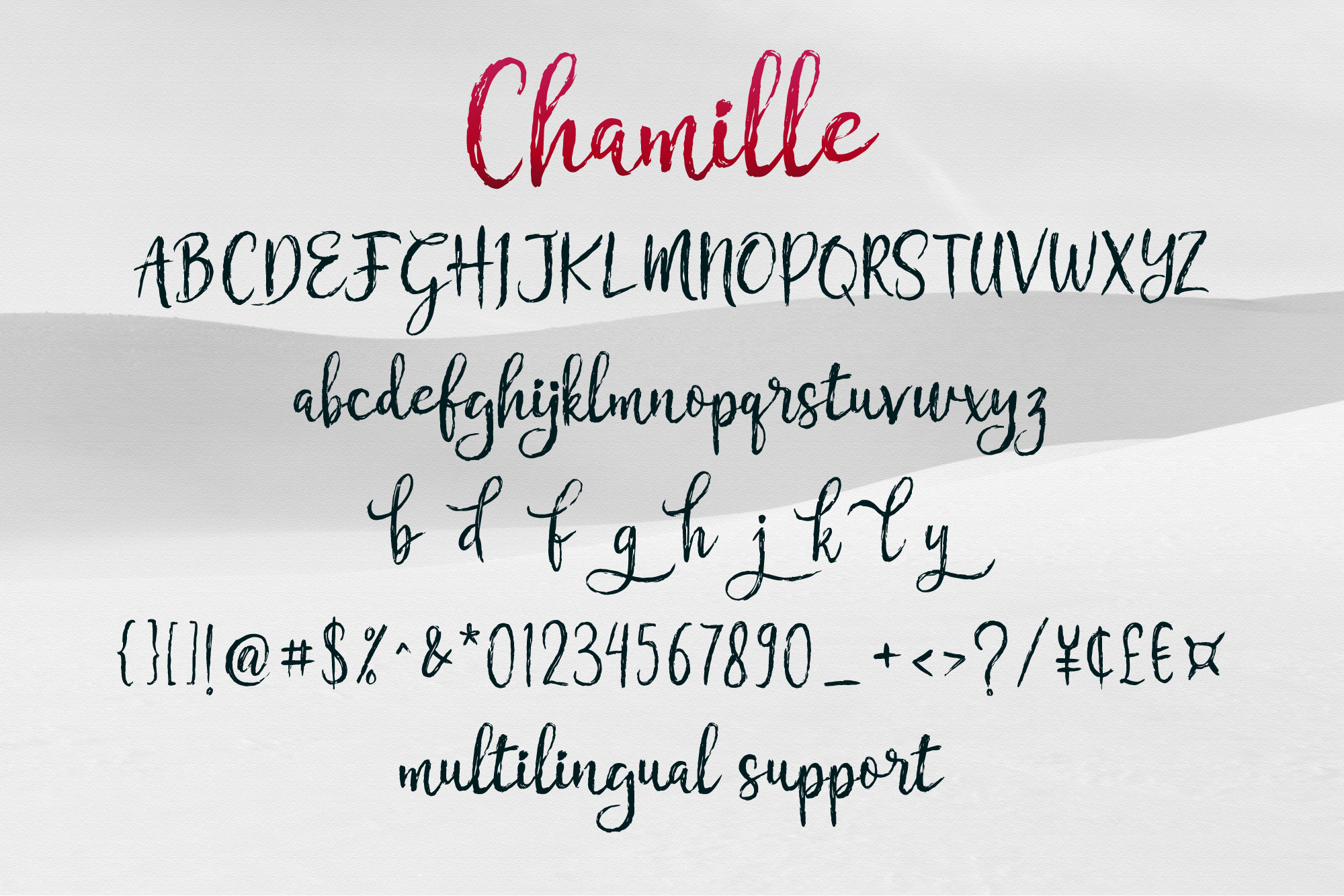 Chamille | sweet script example image 9