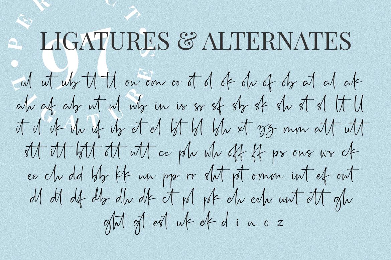 Rushtick Signature Font example image 8