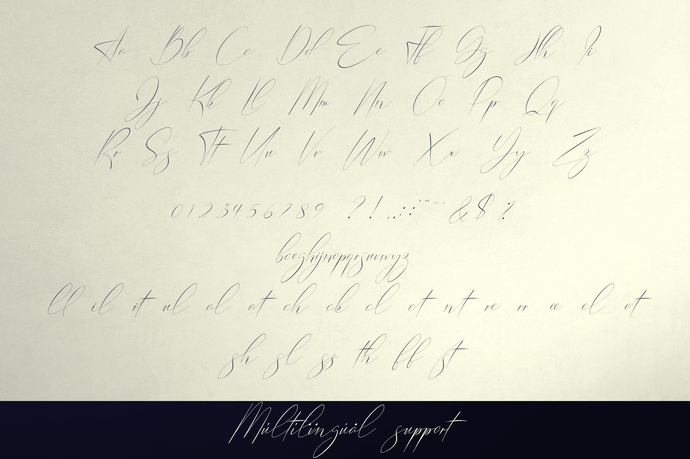 Belinda Tamira - Font duo 20 Logos example image 11