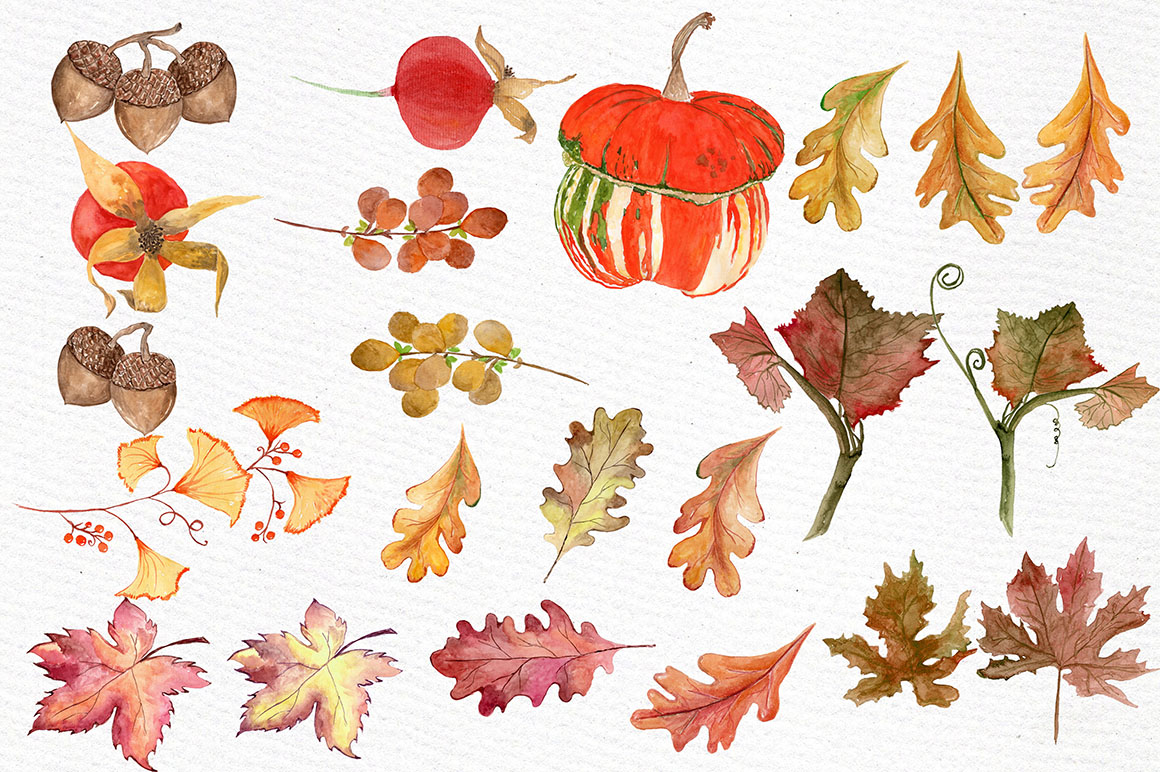 Watercolor pumpkin clipart example image 3