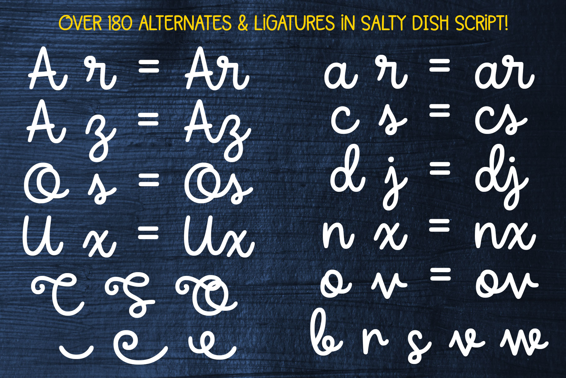 Salty Dish - script and sans font duo! example image 4