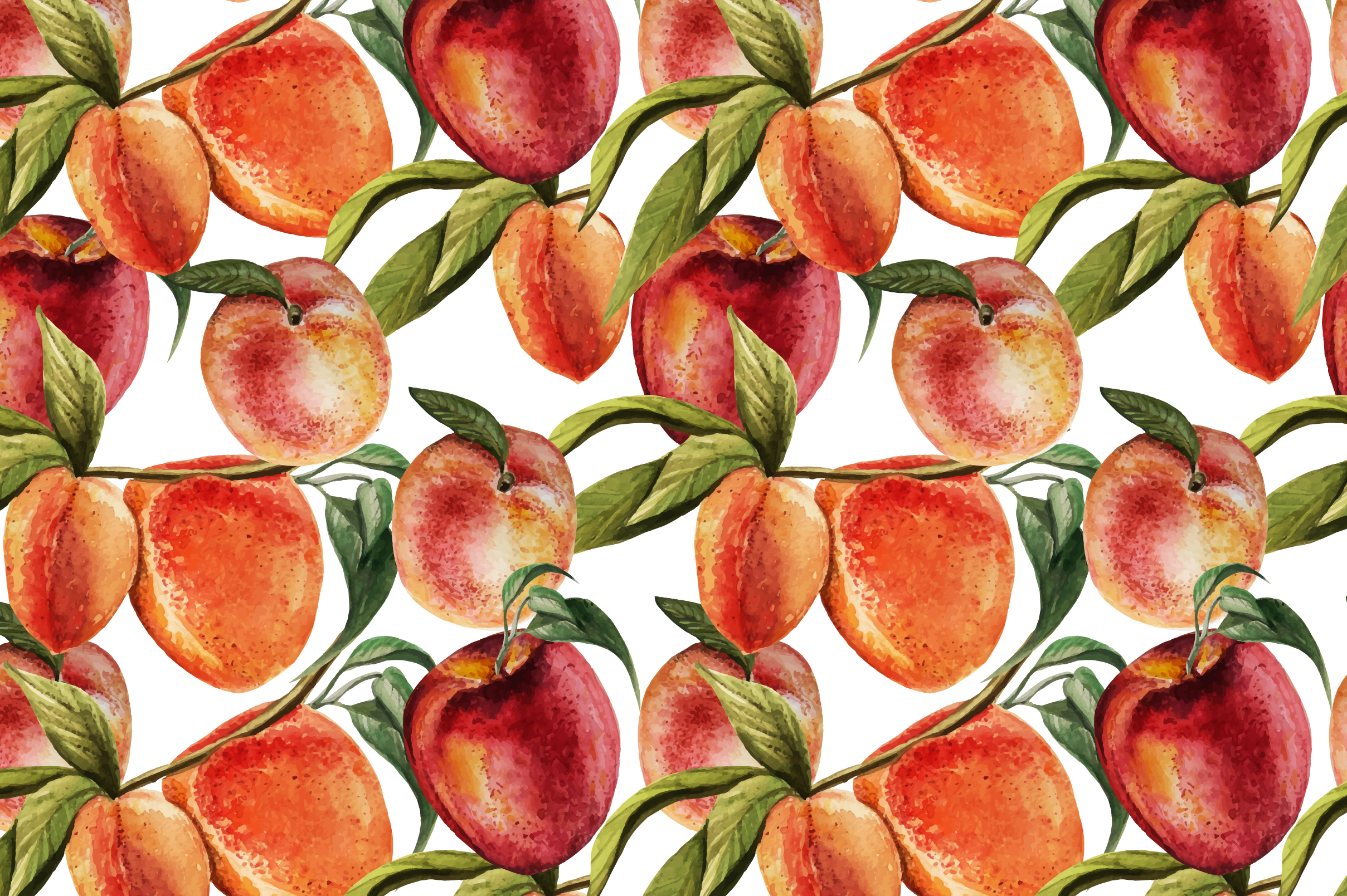 Hand Drawn Watercolor PEACH example image 4