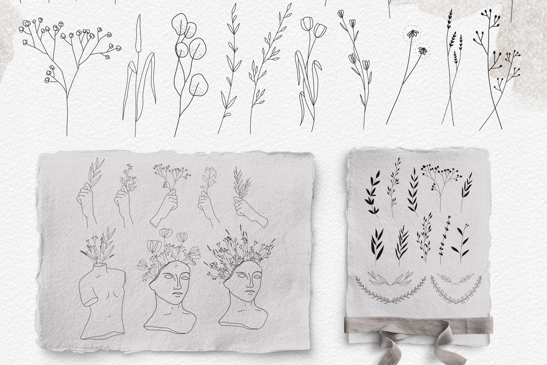 Line art botanical illustrations example image 7