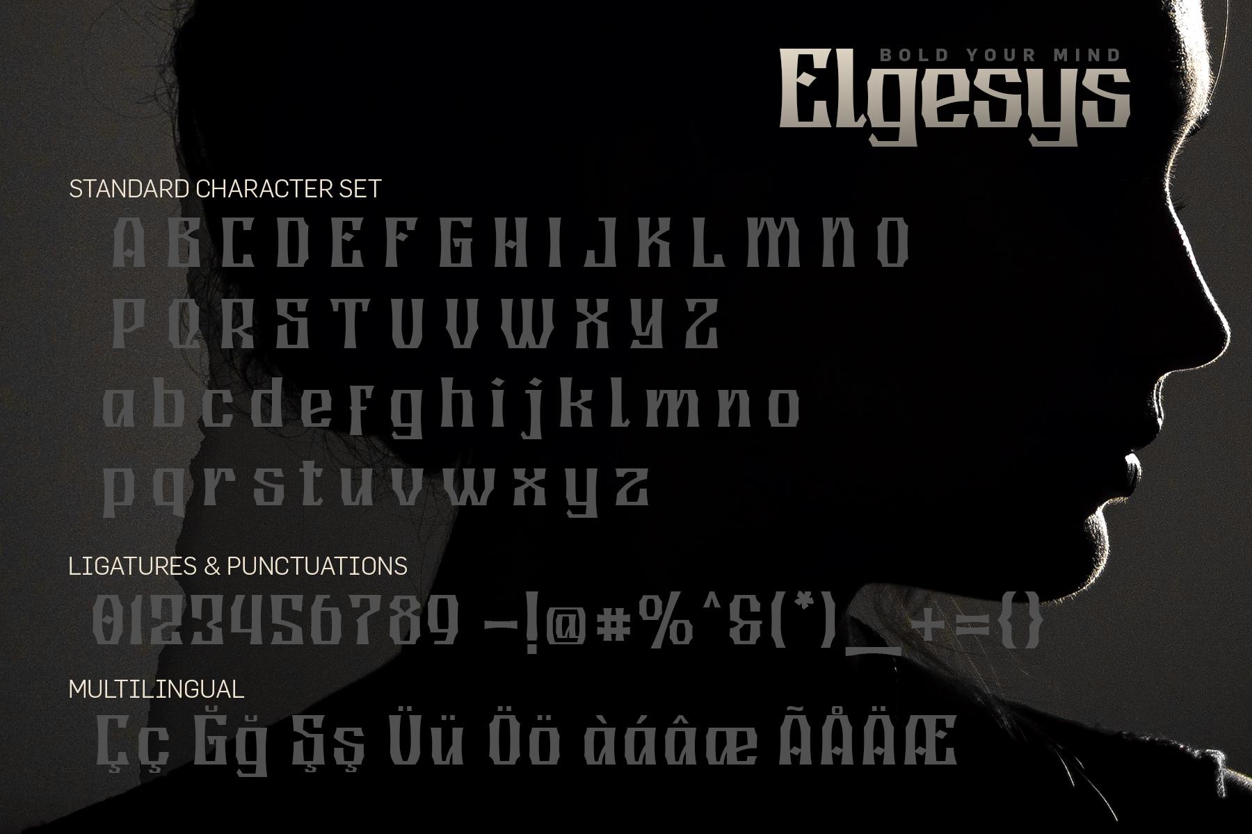 Elgesys example image 5