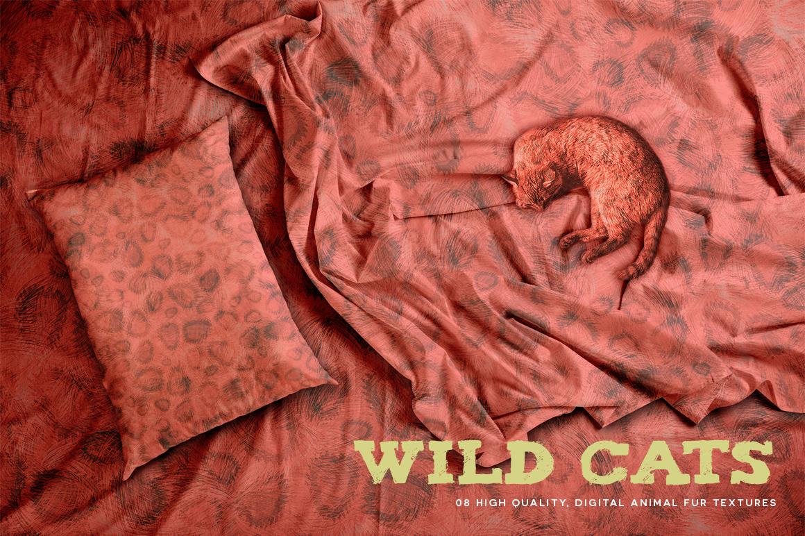 Wild Cats example image 5