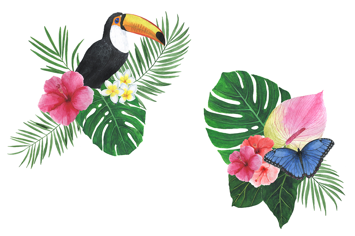 Watercolor tropical clipart example image 5
