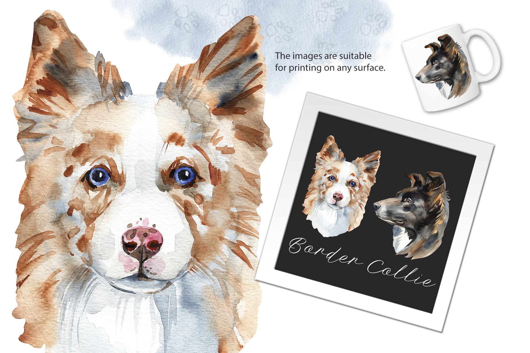 Watercolor dog - Border Collie example image 2
