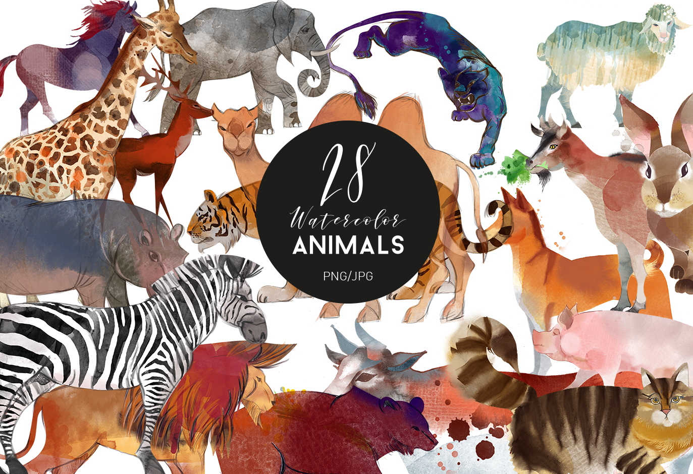Watercolor animal set example image 1