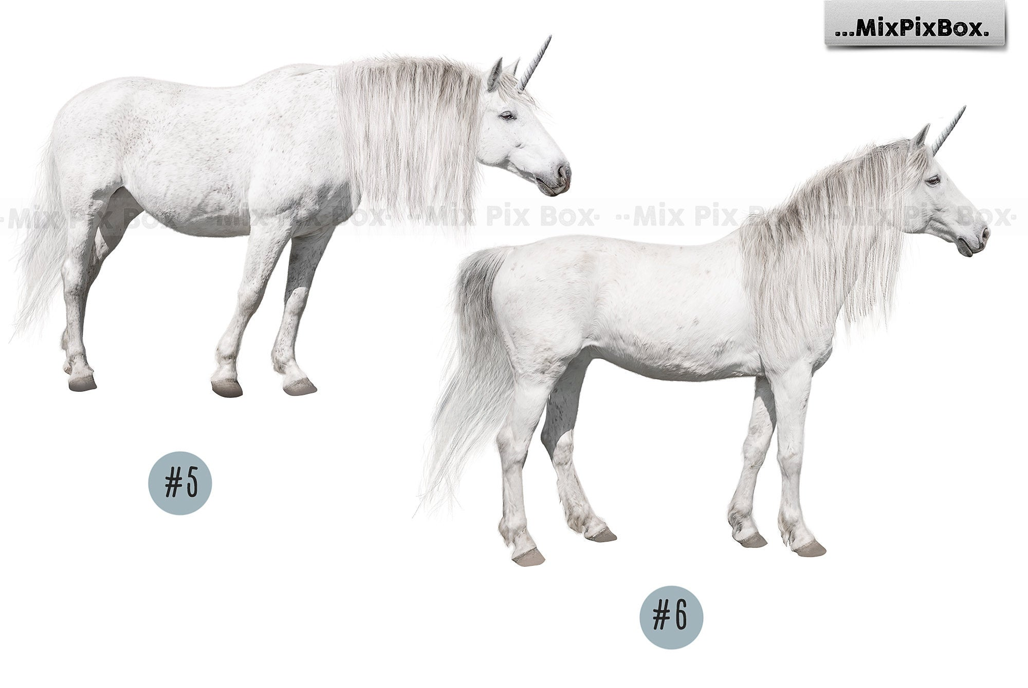 Unicorn PNG Overlays and Backdrops Pack example image 9