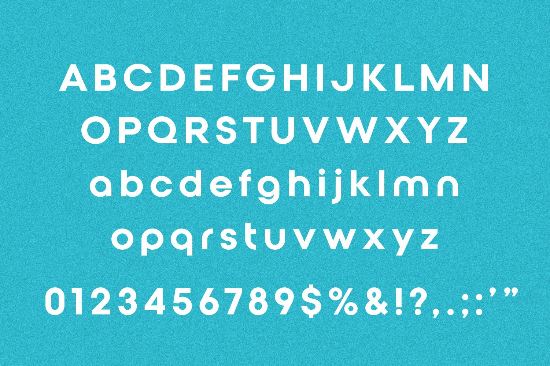 Qualy - Logo Font / Logo Use Only example image 4