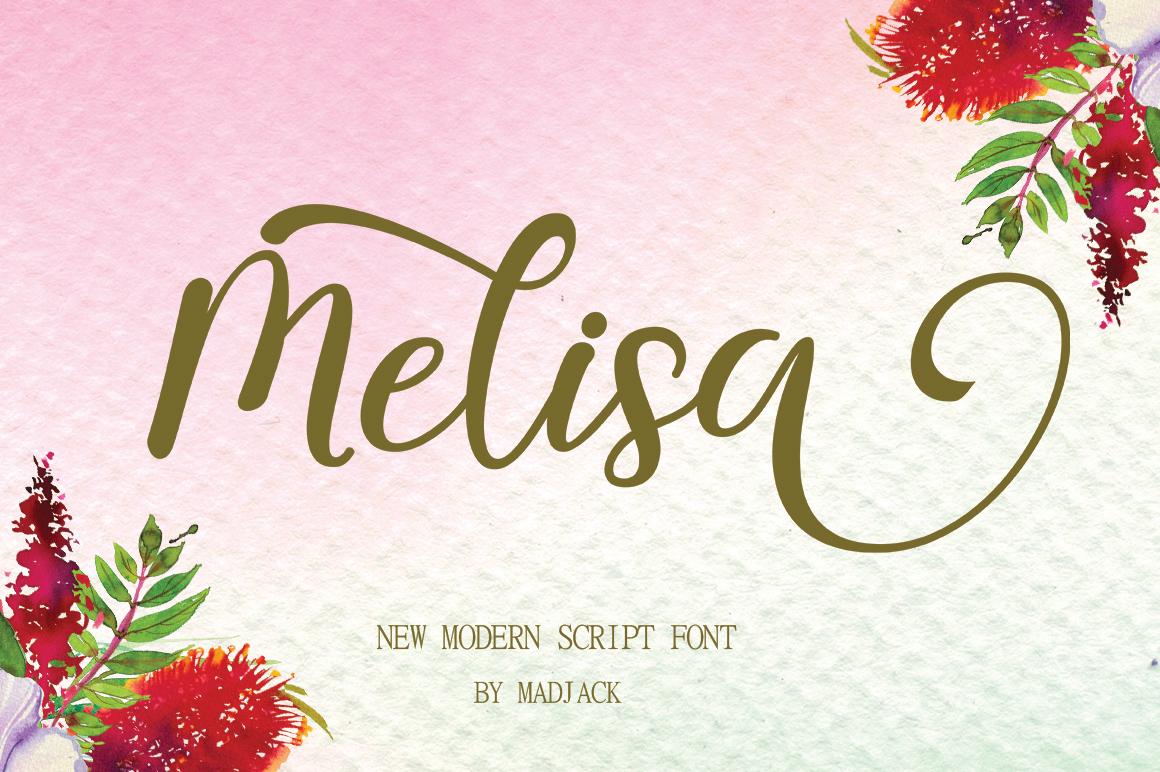 melisa script example image 8