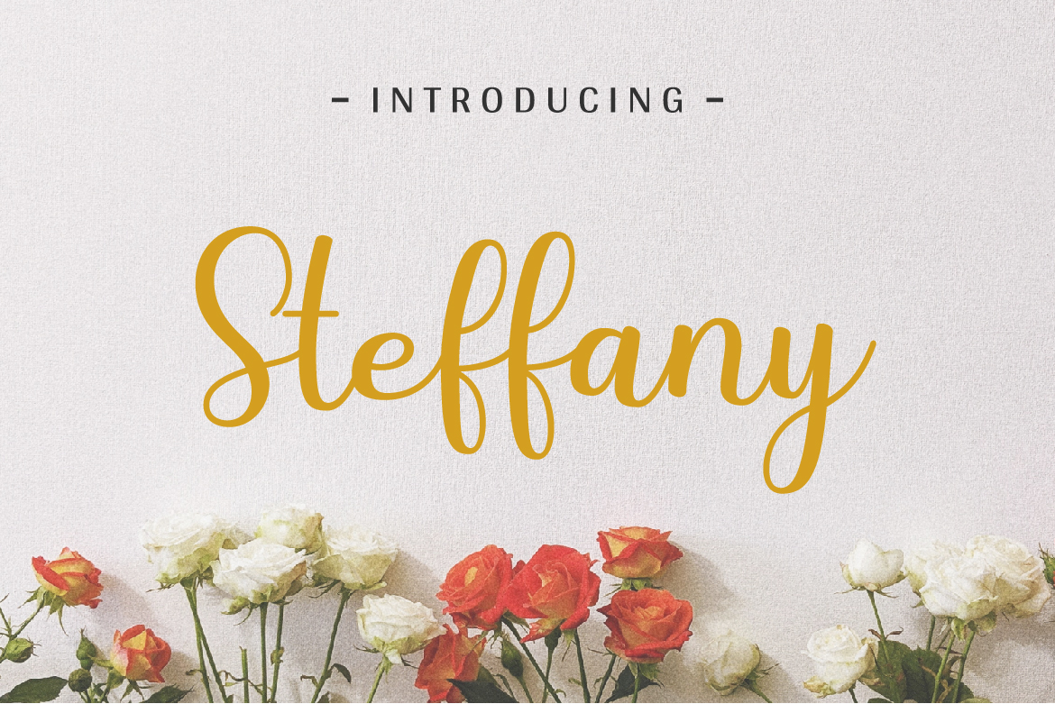 Steffany - Handwriting Font example image 1
