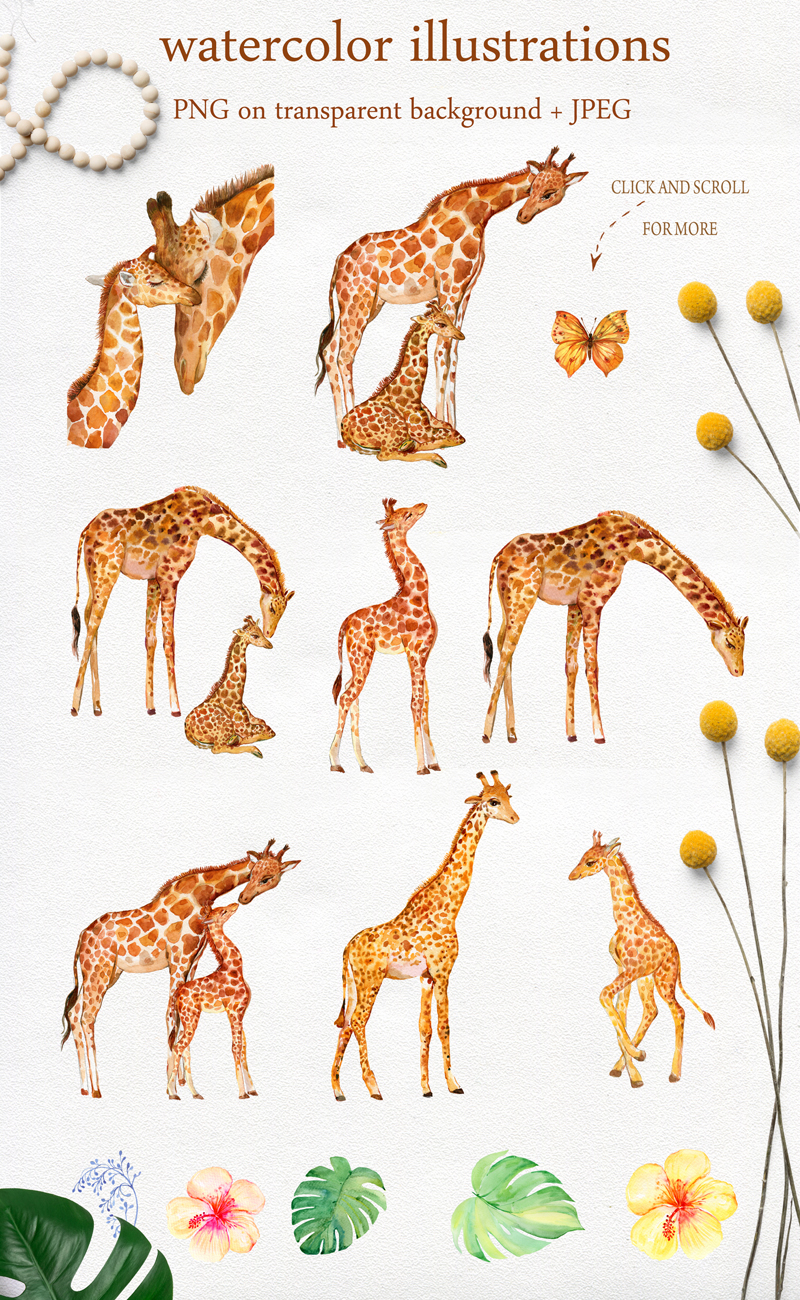Giraffes. watercolor illustrations example image 2