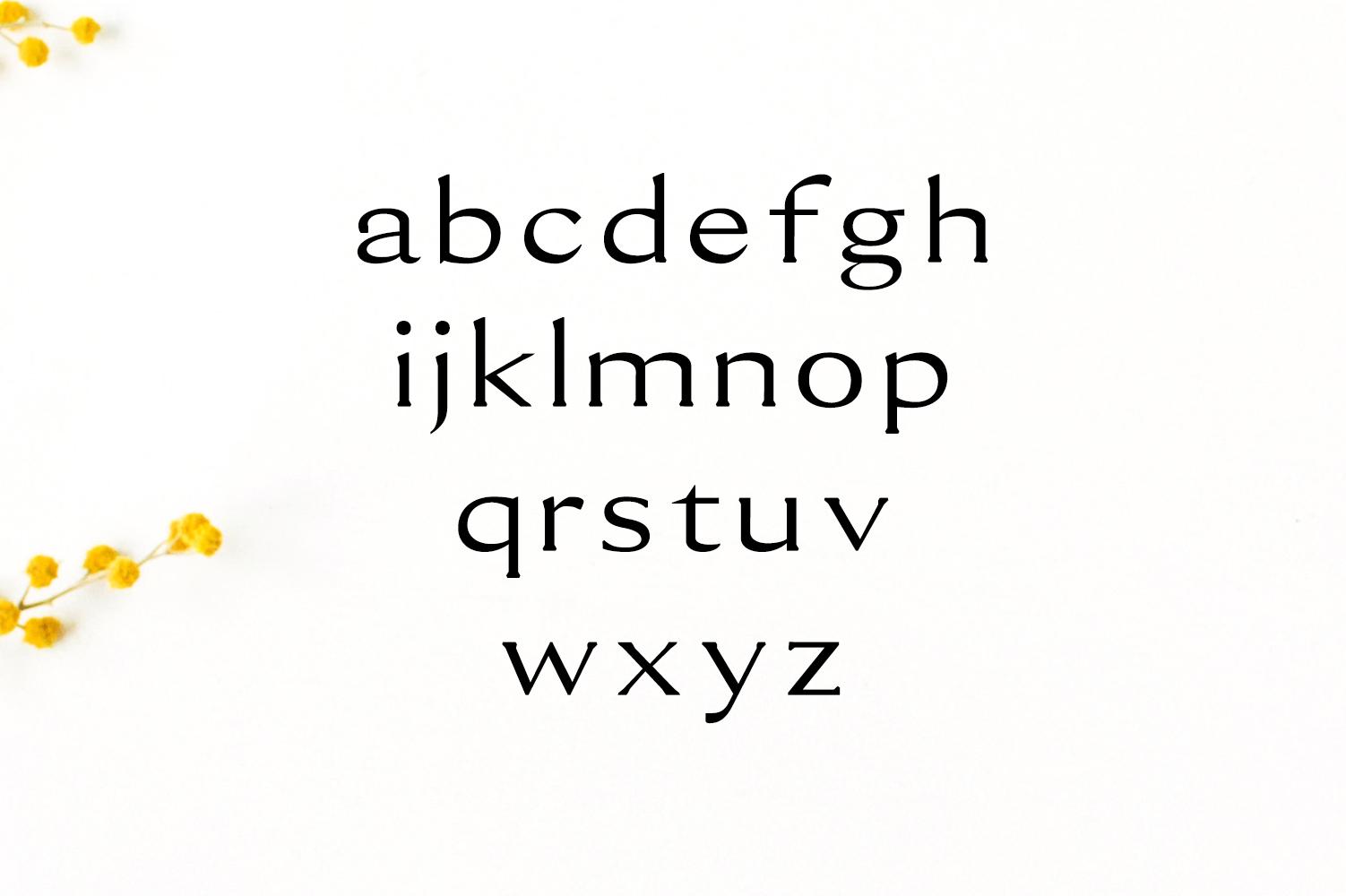 Erynn Serif Font example image 3
