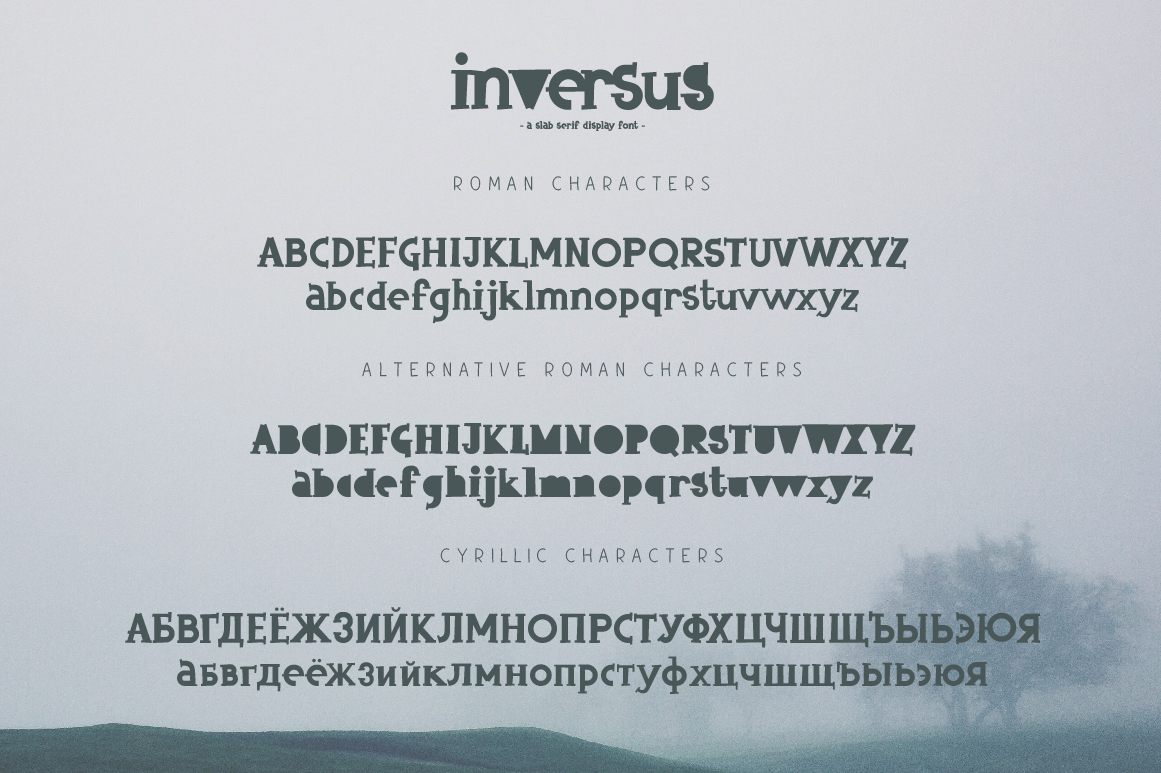 Inversus – a slab serif display font example image 8