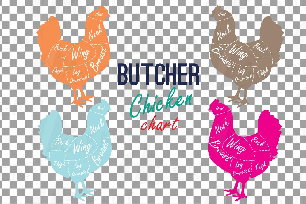 Butcher Chicken Diagram Clip Art Digital Chicken Chart Chi