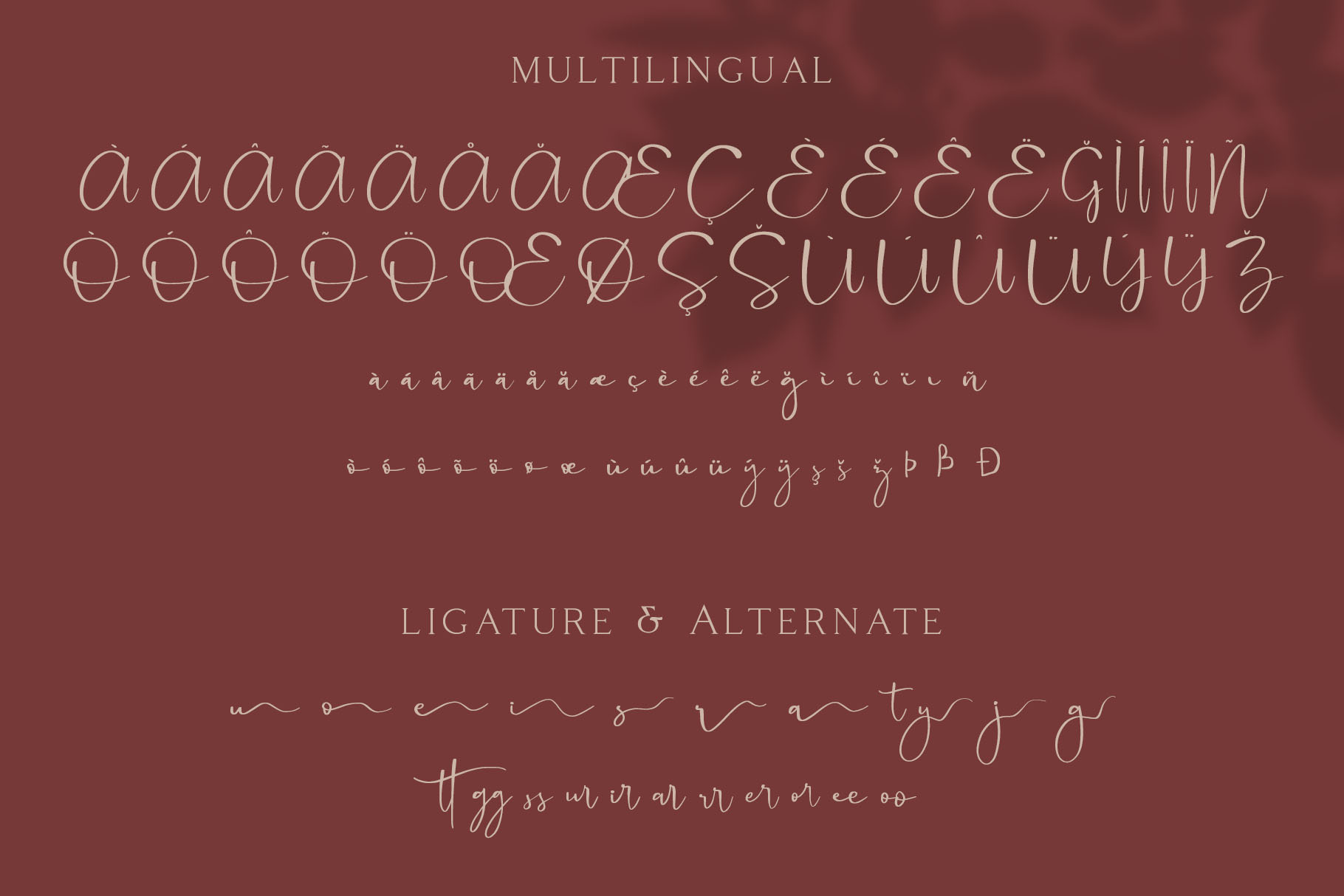 Cattus - Modern Casual Script Font example image 3