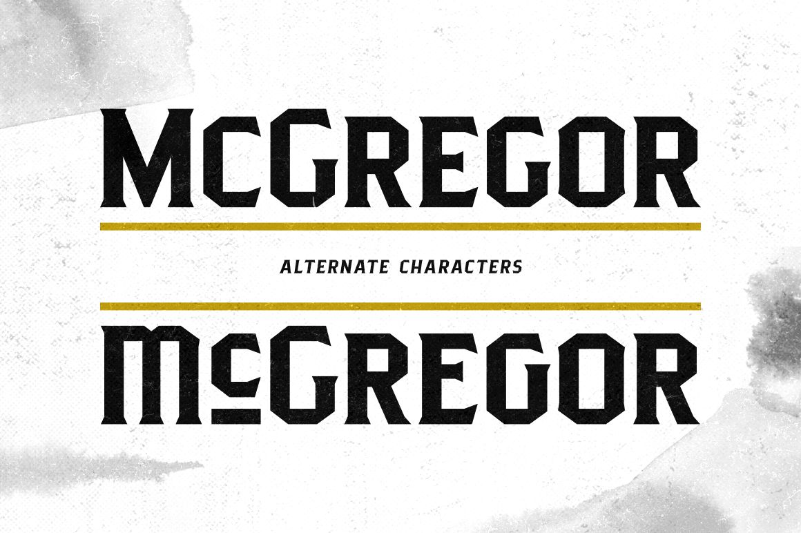 Pittsbrook Serif example image 6