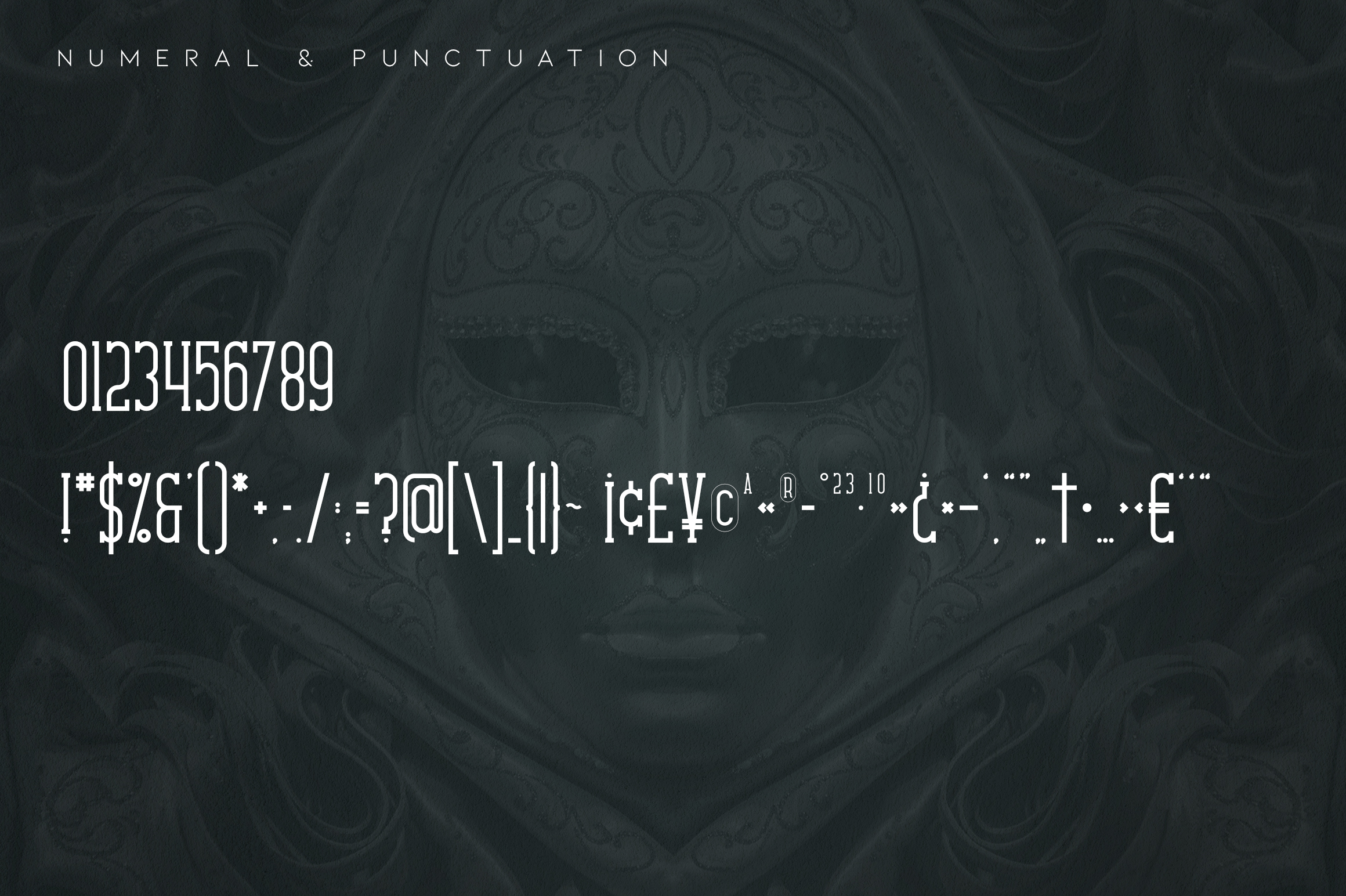 Carnival VP Slab - Latin & Cyrillic example image 10