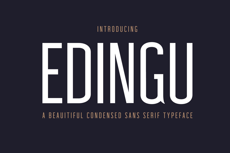 Edingu Sans Serif Font Family example image 1