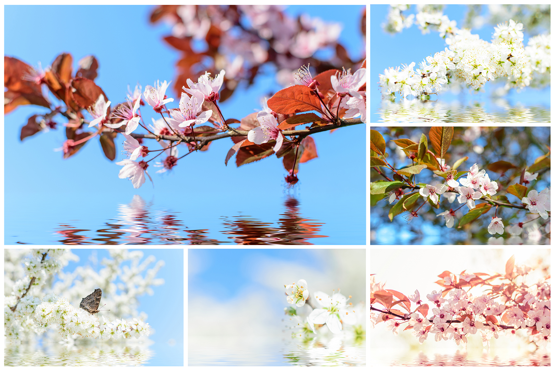 Spring Flowers and Paintings Bundle example image 5