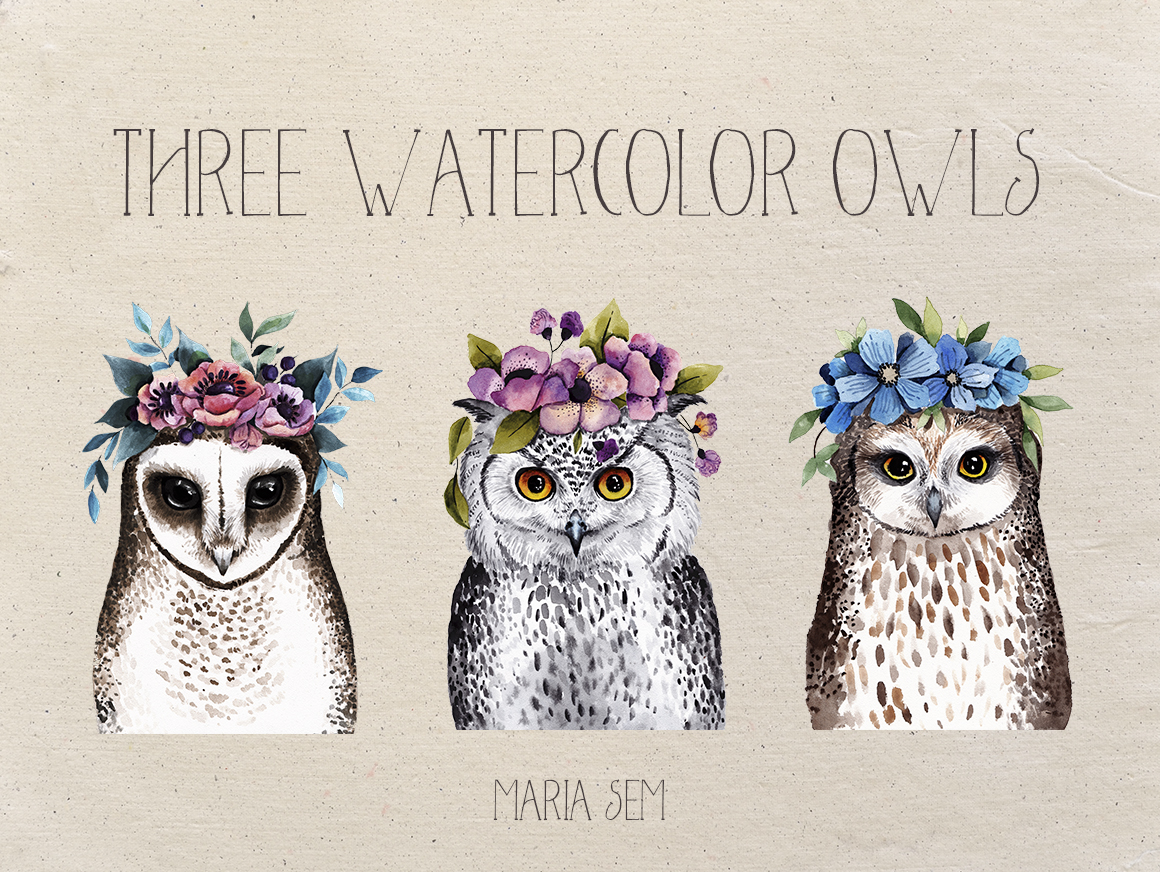 Watercolor Owls example image 2